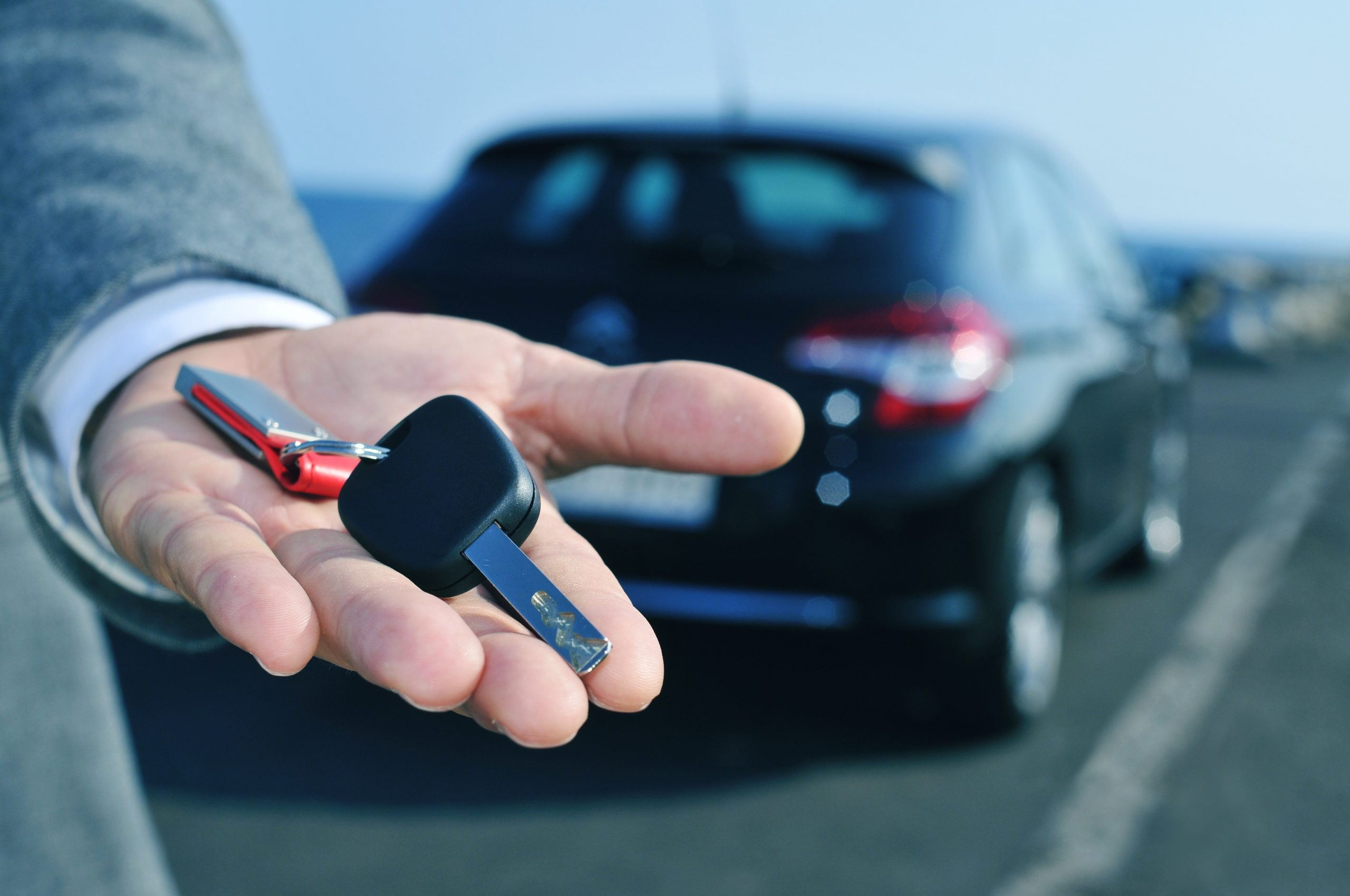 Nelson car rental companies